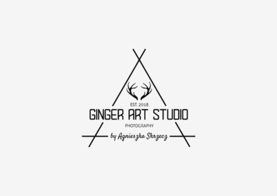 Ginger Art Studio